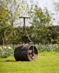 Passer le rouleau : Comment prendre soin de sa pelouse - Linternaute
