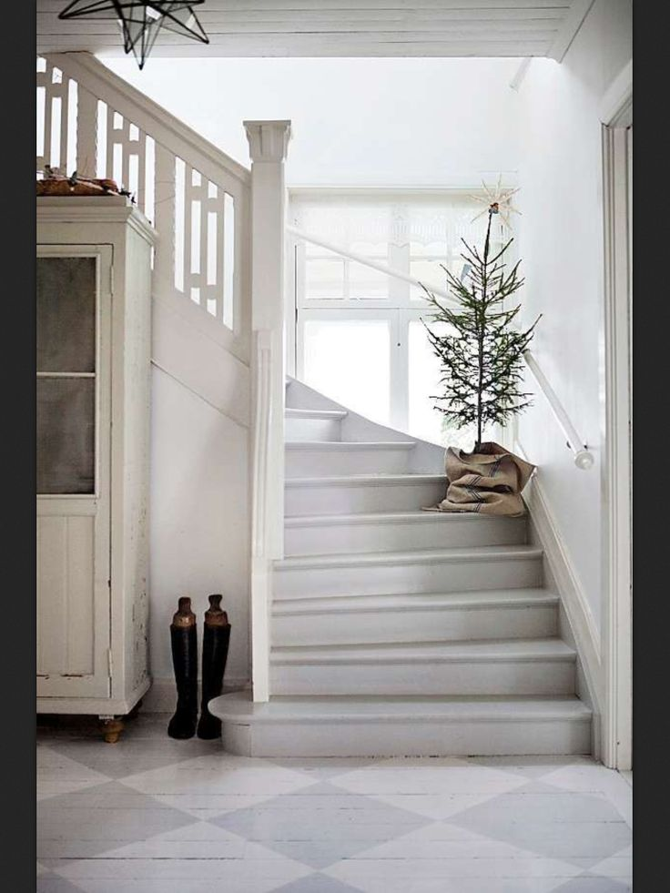 Oh christmas tree! / Oi kuusipuu!