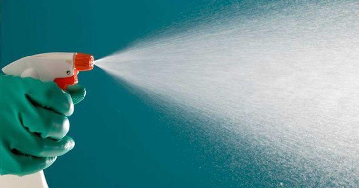 Zázrak jménem ocet: Jak uklidit celý dům bez chemie