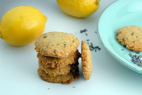 Lemon Lavender Cookies on http://www.elanaspantry.com