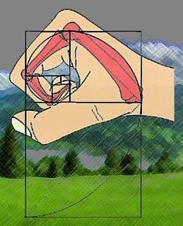 Fibonacci%20hand.jpg (259×320)
