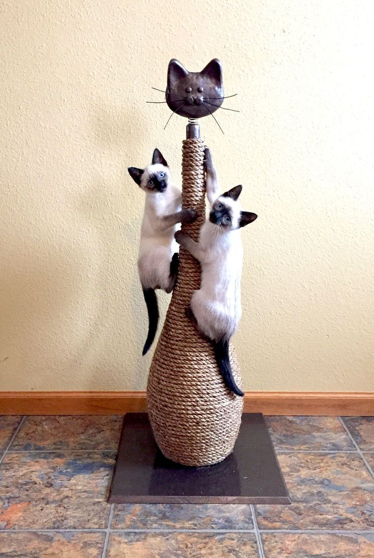 Cat Scratching Post / Scratching tower/ Cat Post, Tall Cat Post, Manila rope with wood base at 38 inches Tall by 5SpringsCreations on Etsy https://www.etsy.com/listing/458698360/cat-scratching-post-scratching-tower-cat $149