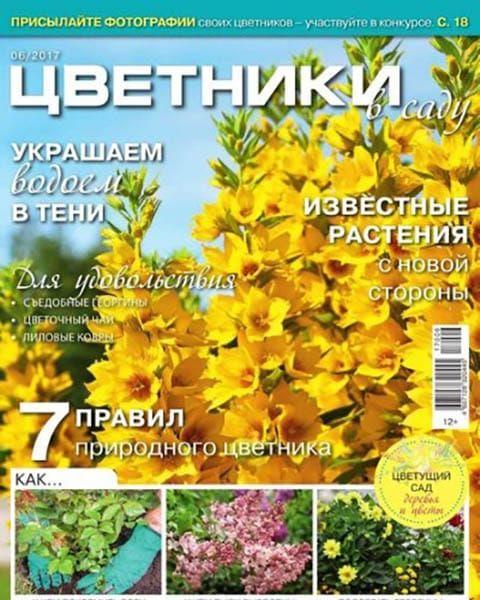 Цветники в саду №6 июнь 2017