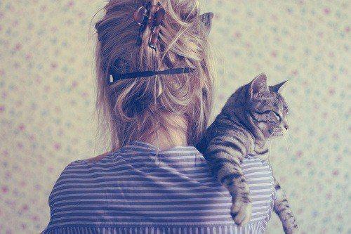"""""""Mulheres e gatos agem como bem entendem. Homens e cães deveriam relaxar e acostumar-se com isso."""": Rose Gardens, Kitty Cat, Messy Hair, Tabby Cat, Vintage Hair, Inspiration Photo, Inspiration Pictures, Girls Hair, Cat Lady"""