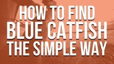 The simple way to find and catch blue catfish (and why they're a lot like teenage boys)