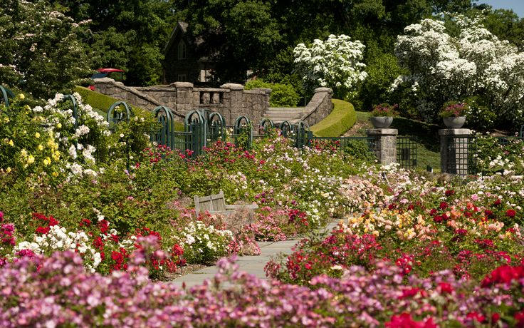 New York Botanical Garden I Want To Go To There Pinterest 400 x 300