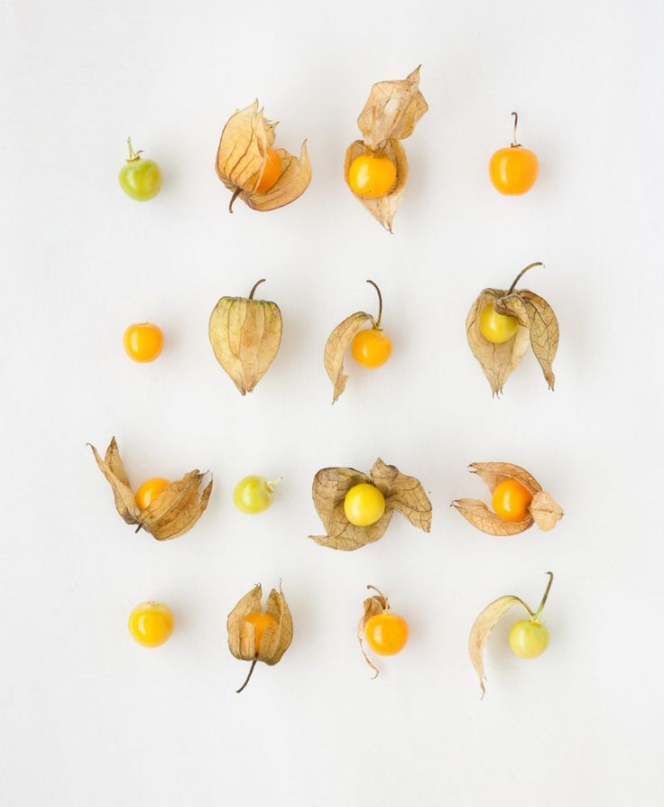 pattern made with one type of food but they all look different. #bywstudent