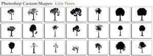 Live Trees by thesuper