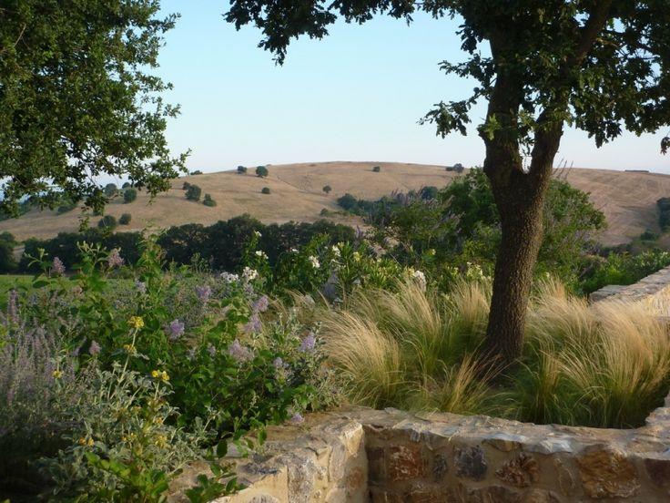 Tuscany - Del Buono Gazerwitz Landscape Architecture