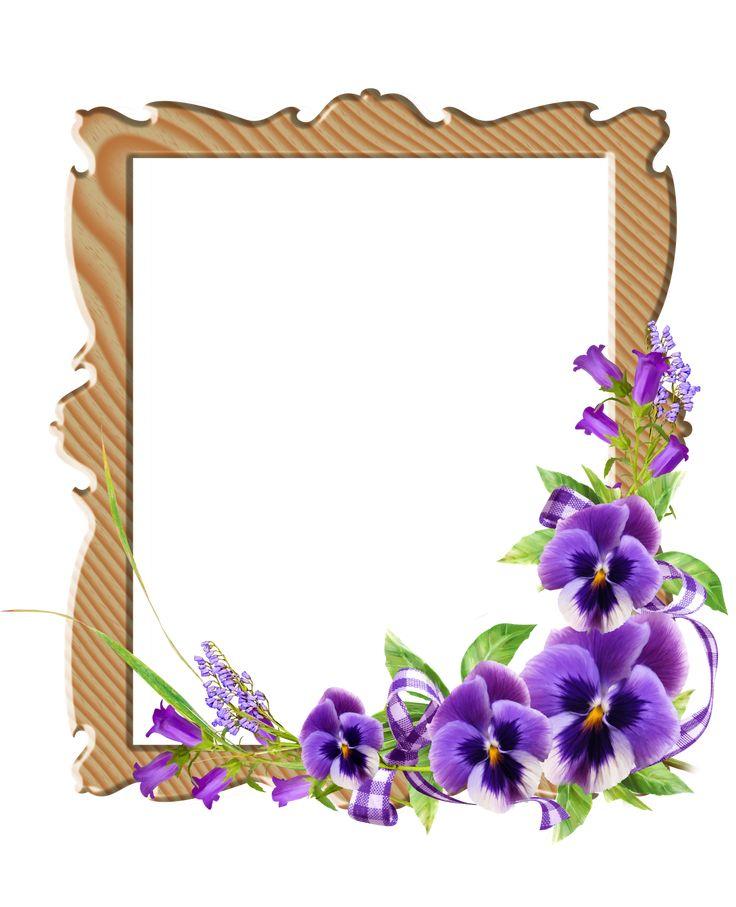 Pin by manasa fillingstation on ok flowers