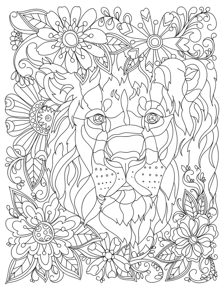 Download This Beautiful Free Lion Adult Coloring Page