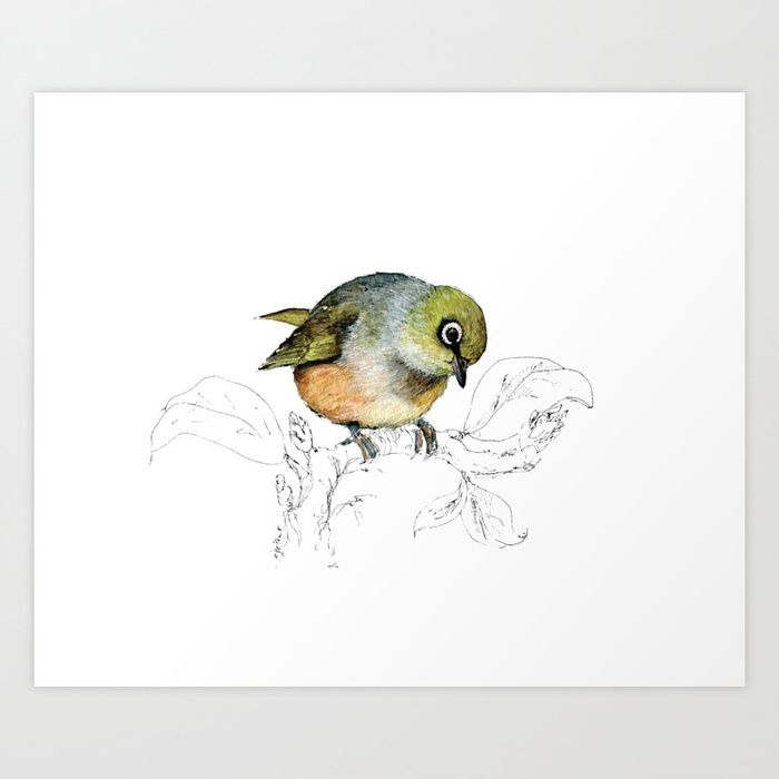 Buy Sylvereye - Waxeye bird Art Print by emiliegeant. Worldwide shipping available at Society6.com. Just one of millions of high quality products available.