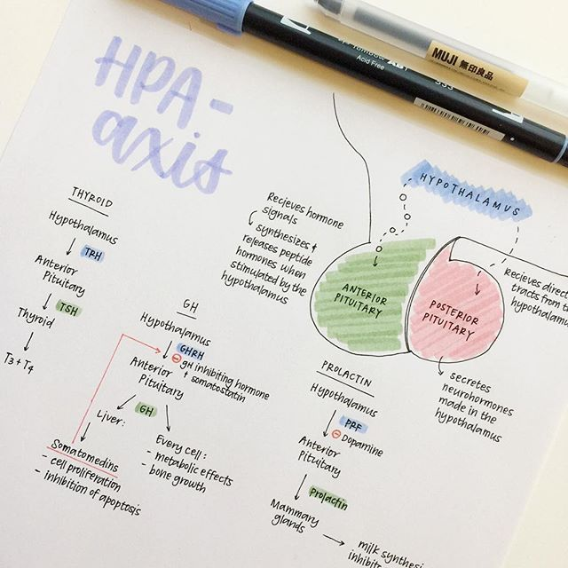 Awesome notes. Inspiration