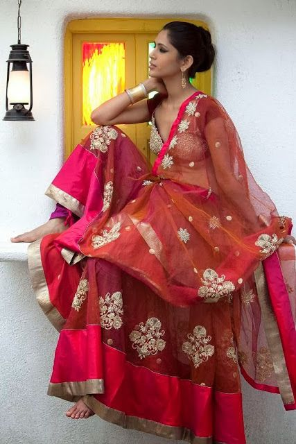 Silk+Chanderi+Lapeti+Sari+worn+with+a+Velvet+sensuous+choli.jpg (427×640)