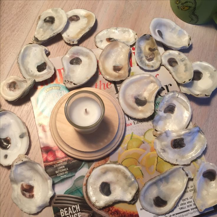 How to make your own oyster shell candle holder -- with picture instructions!
