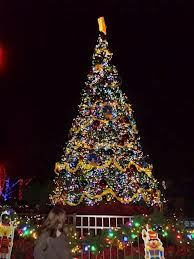 Bildresultat för london department stores christmas trees