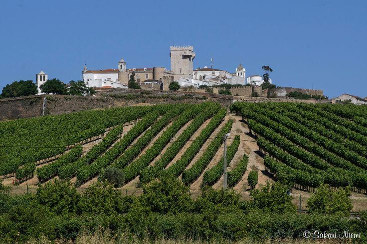 PT_160618 Portugali_0185 Panoraamaa viiviljelmien yli Estremozin kaupunkiin Alentejossa