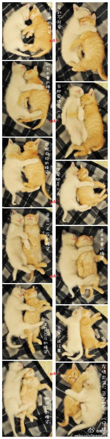 So cute, so warm, so sweet.