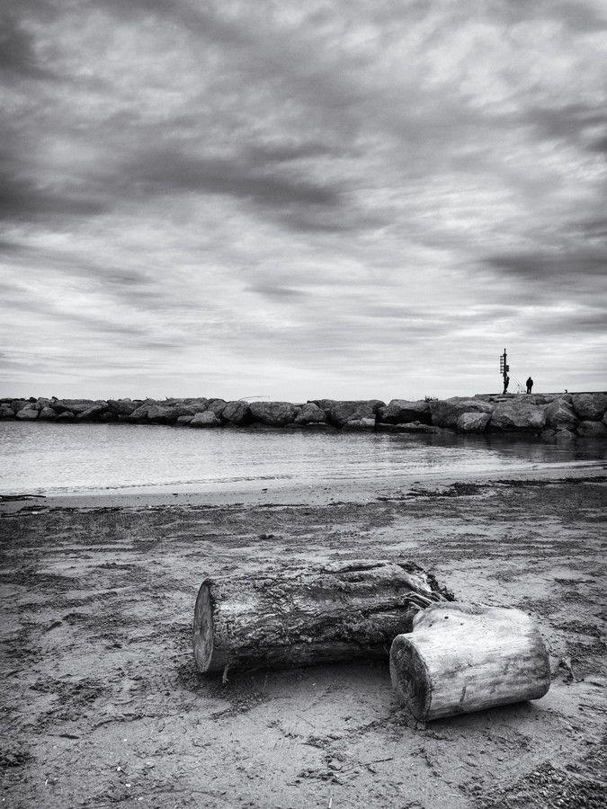 I Tronchi del mare by Carlo Pelliccioni on 500px