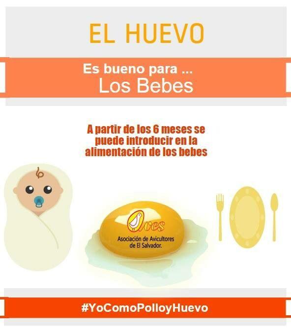 El huevo y los bebes