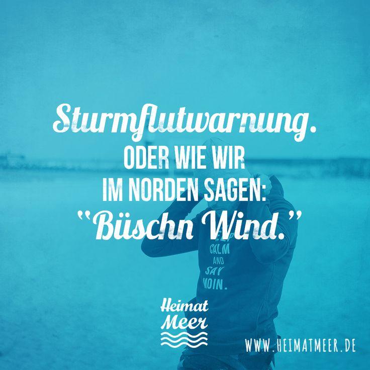 """Sturmwarnung. Oder wie wir im Norden sagen: """"Büschn Wind. """">>"""