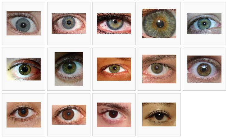 Eye color chart, Shades and Eye color on Pinterest
