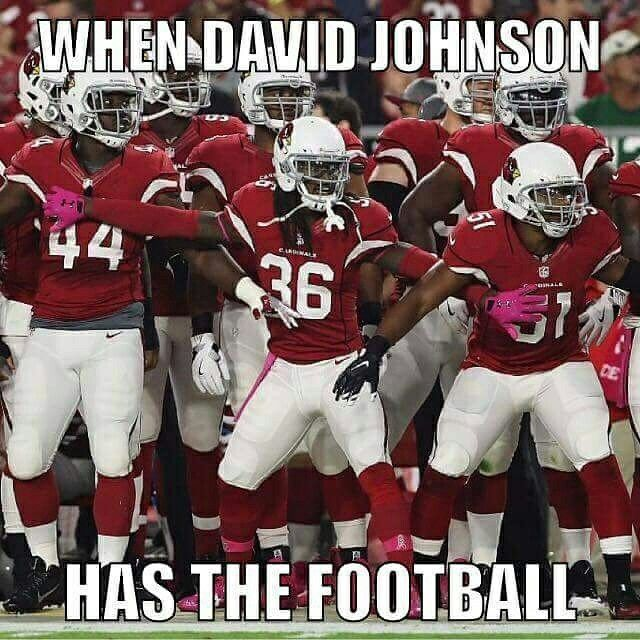 Arizona Cardinals RB David Johnson #BirdGang #AZLadyBirds 2016
