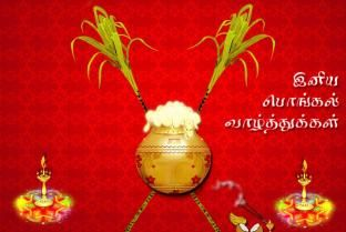 happy pongal wishes in tamil photos
