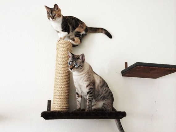 "Sisal Post, attached to 18"" Cat shelf covered in Plush Fabric"
