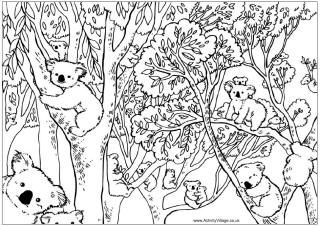 Count the koalas puzzle and colouring page, koalas in eucalyptus tree.  This site has a collection of Australian Animal themed coloring pages for free