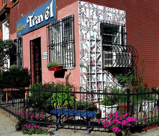 69 Best Carroll Gardens Images On Pinterest Carroll Gardens Brooklyn And New York City
