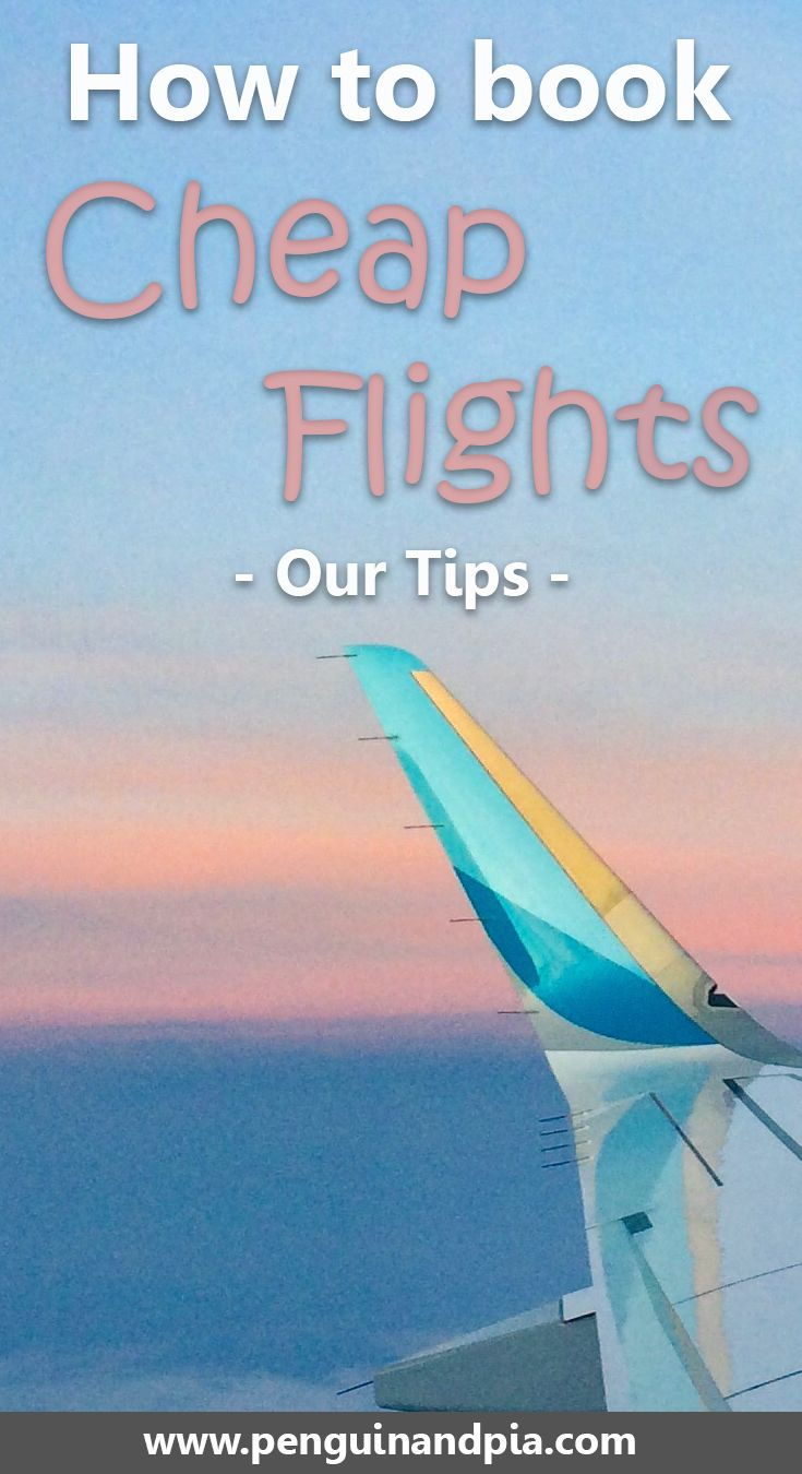 25 unique fly to ideas on pinterest homemade fly spray for Where can i find cheap airfare