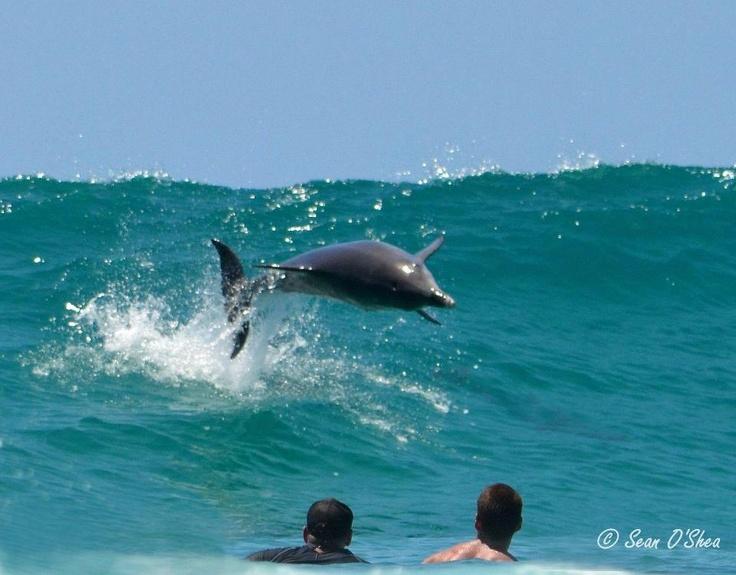 Tallows Beach, Byron Bay, NSW