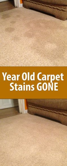 Year old Carpet Stains Gone!! This is the best cleaner ever!! Cover with baking soda, spray with vinegar-water, wait, scrub, vacuum up, voila!