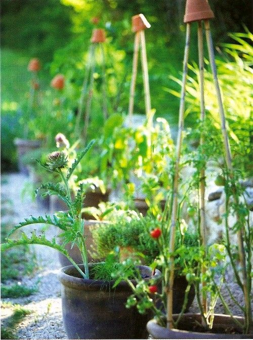 Gardening Pics 104344 best great gardens & ideas images on pinterest | garden