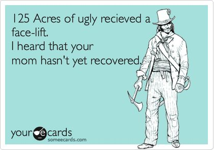 125 Acres of ugly recieved a face-lift. I heard that your mom hasn't yet recovered.
