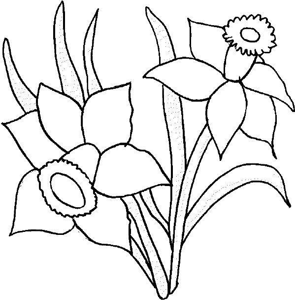This Page Contains There Are Many Kinds Of Flowers Which You Can Choose To Color Such As Sunflower Daisy And Tropical Printable Coloring Pages