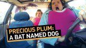 Precious Plum: A Bat Named Dog 4