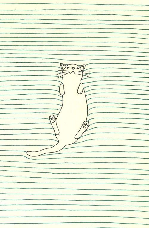 === kitty