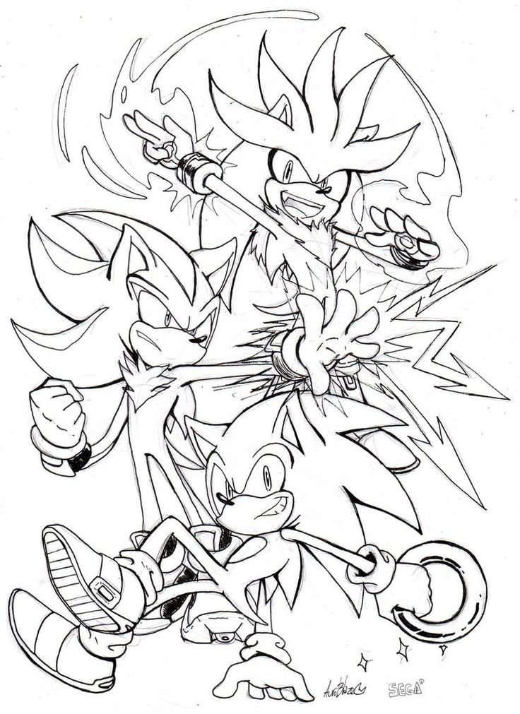 391 best images about Silver the Hedgehog on Pinterest ...