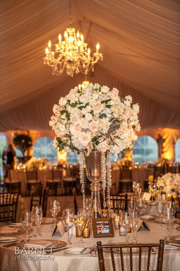 backyard wedding venues in orange county ca%0A Kimberly Bradford Events provides complete wedding coordinating and  planning of all aspects of the event  Serving greater Los Angeles  Orange  County