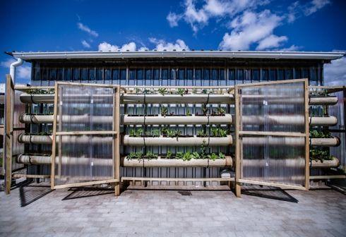 Vertical food garden at Gege crèche in Langa