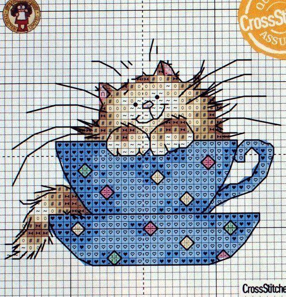 Borzas cica a teás csészében / A través de Marie-jacqueline Scapol <3