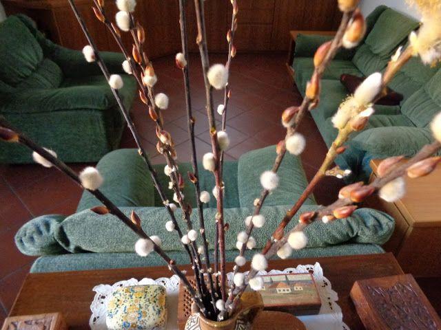 Rami di salice - Salix caprea -  Foto-diario di una giardiniera curiosa