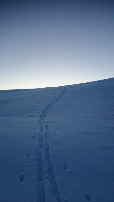 Ensomt skispor - Lonely ski track