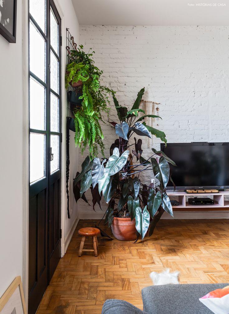 jardim vertical feito com tela metálica e espécies que se dão bem em ambientes internos