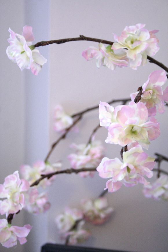 DIY a cherry blossom branch for your home in under 5 minutes! Perfect for this year's slow spring.