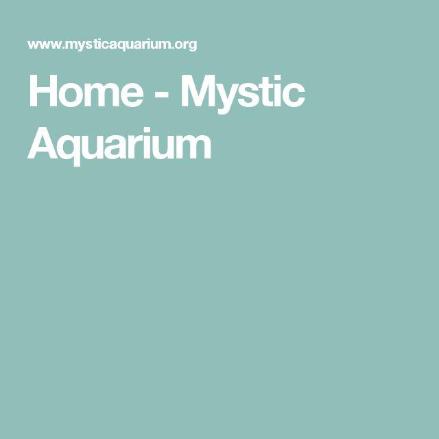 25 Best Ideas About Mystic Aquarium On Pinterest