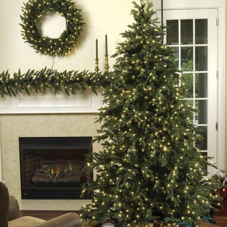 carolina fir prelit tree beautiful christmas treesrealistic - Realistic Christmas Trees