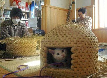 Traditional japanese craft: Neko chigura